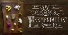 fermentingpic2